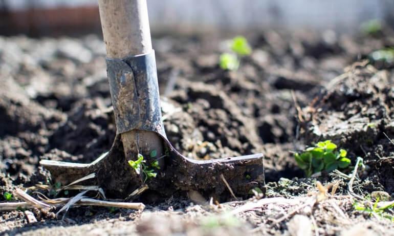 6 стилей ландшафтного дизайна для вашего сада