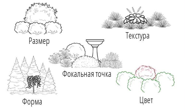 Доминирование элементов в ландшафтном дизайне