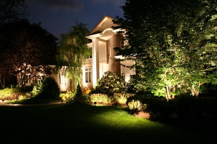 Подсветить деревья и кустарники - это отличная идея