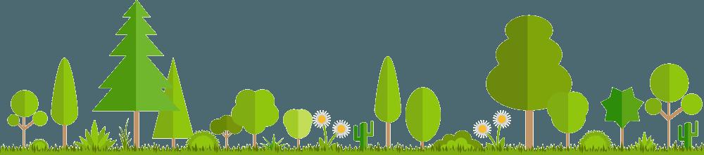 Продажа растений от компании Р-ПАРК