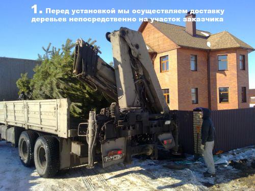 Перед установкой мы осуществляем доставку деревьев непосредственно на участок заказчика