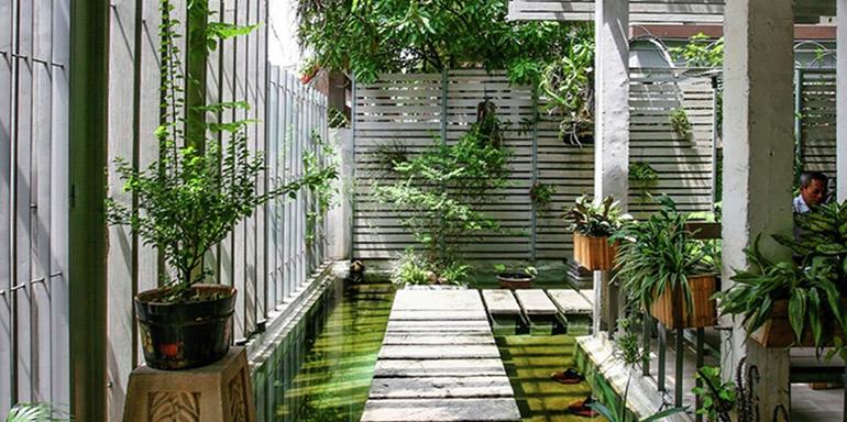 Озеленение офисов в СПб