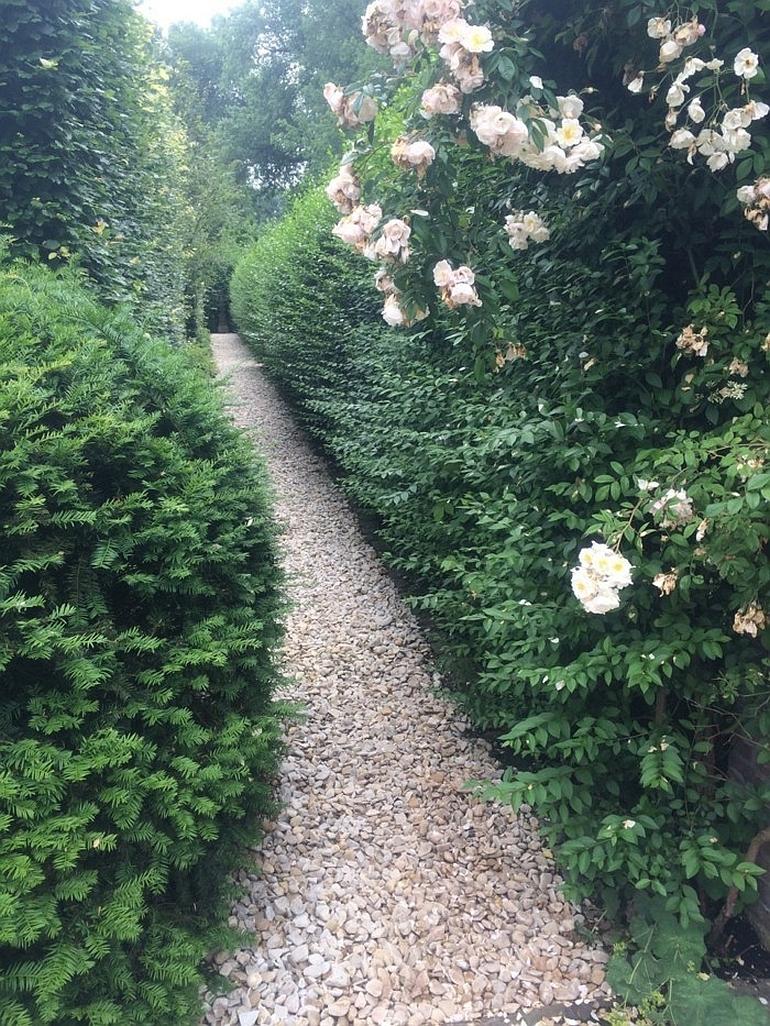 Гравийный сад - это красиво!