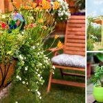 Примеры дизайна красивого сада