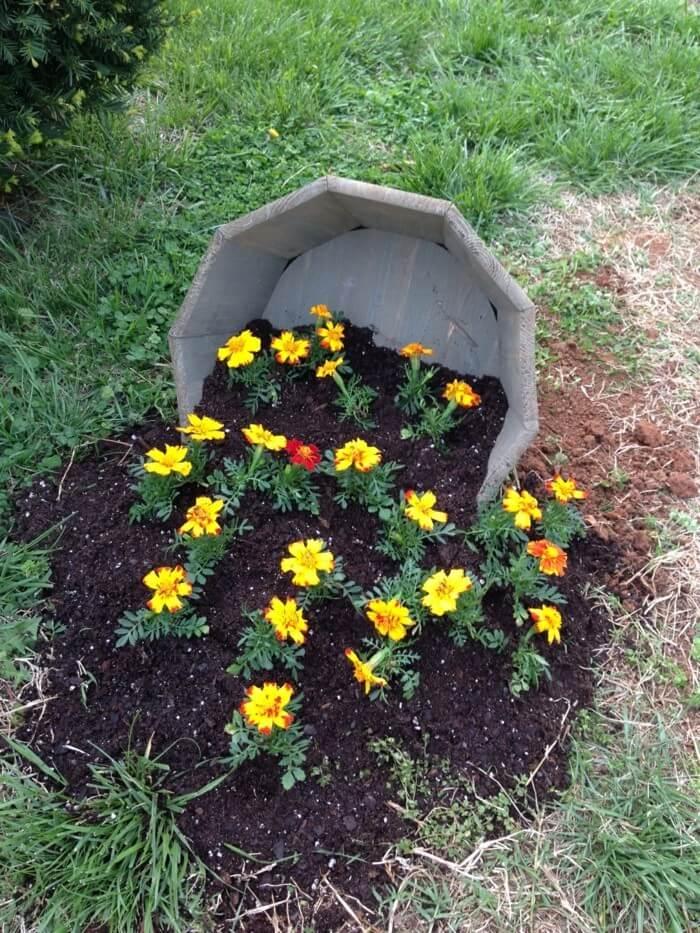 Креативная идея, как посадить цветы в саду