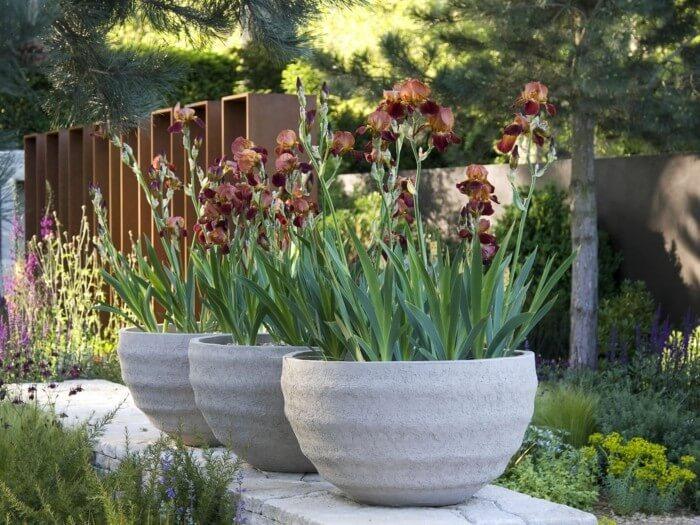 Контейнеры для растений из бетона возвышают сад