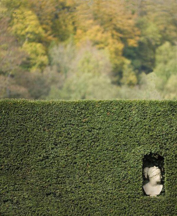 Живой садовый забор - вечнозеленая живая изгородь со встроенной небольшой статуей