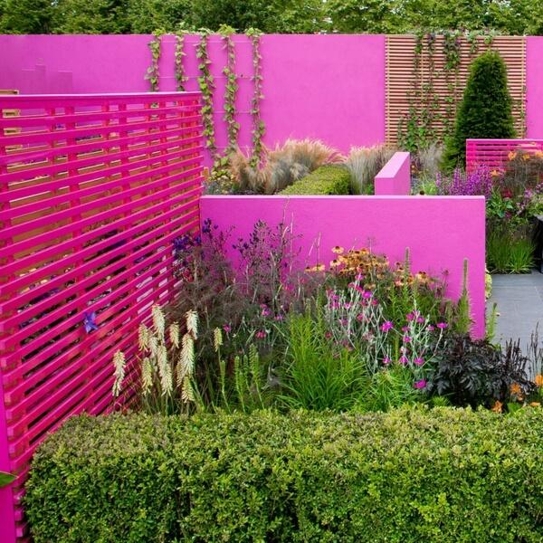 Торжество розового в вашем саду
