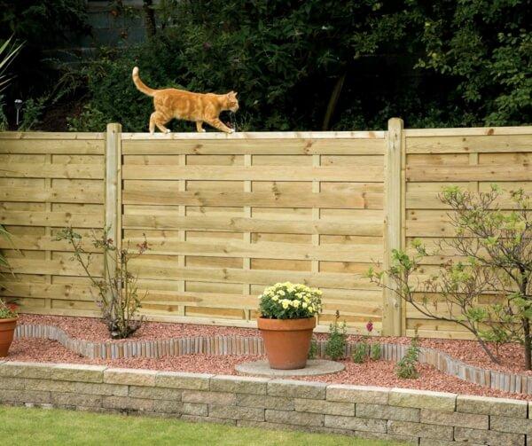 Садовая ограда, которая обрадует вашего кота