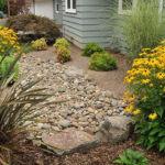 Выбор растений по улучшению переднего двора