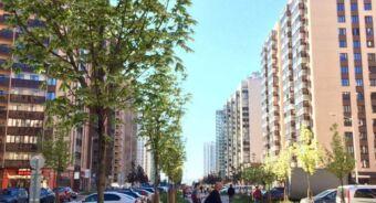 Пример благоустройства бульвара Менделеева